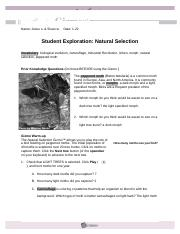 Natural Selection Worksheet Answer Key ly Darwins Natural further Darwin Natural Selection   Not Lossing Wiring Diagram • likewise Natural Selection Simulator also Natural Selection and Evolution of Rock Pocket Mouse Potions besides Natural Selection Worksheet Answer Key New Evolution Natural moreover Darwin's Natural Selection Case Stus Worksheet for 7th   12th additionally  besides  together with  in addition  furthermore Natural Selection Evidence Of Evolution Worksheet Answer Key   Free in addition Darwin Natural Selection Worksheet   Unboy org furthermore Evolution and Selection Worksheet Answer Key or Evidence for in addition The Making of the est  Natural Selection in Humans   PDF likewise  likewise Hd Wallpapers Middle Adaptation Worksheets Android on Kids. on natural selection worksheet answer key