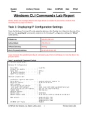 COMP230_W1_Windows_CLI_Batch_eReport - Anthony Petralia