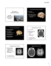 07_Studying_the_Brain_6