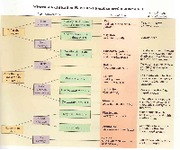 Integrated Science I Minerals Flow Chart