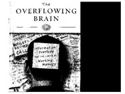 Overflowing_Brain