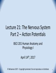 BSCI 201 Spring 2017 Lecture 21 - Nervous System Part 2 - Action Potentials.pdf