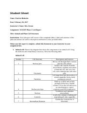 SCIE207_Lab2_worksheet_REV (1)