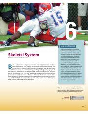 Skeletal System - Chapter 6-8 - Seeley's A&P.pdf