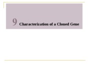 Chapter_9_-_Characterization_of_a_Cloned