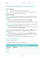 Chemical Reactions and Enzymes Worksheet