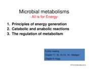 15AU_Mibi_4_Microbial Metabolism [Compatibility Mode]