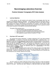 Neuroimaging Laboratory Exercise - Background Information