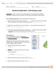 Cell Energy GIZMO worksheet Activities A-B 2020-2021 hi.docx