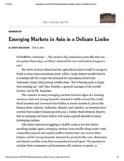 140211_Emerging Markets in Asia in a Delicate Limbo_NYT
