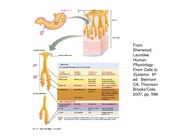 food science and gastroinstestinal physiology - 00101