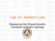 Lab 11 Hooke's Law