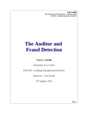 research paper external auditing