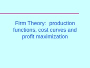 firm_theory_1_Presentation