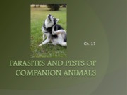 Ch._17_Parasites_and_pests_of_companion_animals