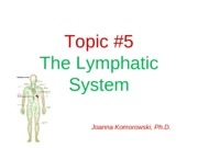 ANP 1105  The lymphatic system JK0