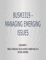 Managing Emerging Issues - Powerpoint