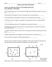 in addition Diffusion and Osmosis Worksheet   Mychaume also Osmosis Practice Worksheet   Hot Resources for November   Worksheets besides diffusion and osmosis worksheet answers   Siteraven together with math  worksheet answers  diffusion and osmosis worksheet likewise Osmosis And Diffusion Worksheet Pdf also Diffusion Osmosis Worksheet  1 in addition Diffusion and Osmosis together with Gcse science biology diffusion osmosis and active transport furthermore Diffusion And Osmosis Worksheet   Newatvs Info additionally  also  together with Science 8 Diffusion And Osmosis Worksheet Answers   Free Printables besides 34 Elegant Diffusion and Osmosis Worksheet Answer Key together with Nam  Vrgg besides osmosis diffusion venn diagram   Nadi palmex co. on diffusion and osmosis worksheet key