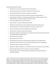 HCR 240 LESSON ONE STUDY GUIDE.docx