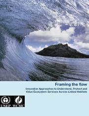 Framing the Flow_WCMC.pdf
