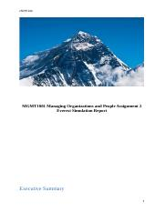 Everest-Simulation-Report.docx