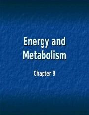 Energy and Metabolism - Lecture #8.ppt
