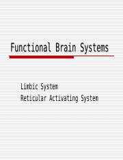 Functional Brain Systems Student