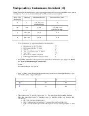 blood-type-codominance-practice-problem-key.pdf - Blood ...
