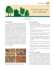 Mulching Your Trees and Landscapes