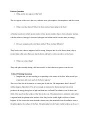 The Sun Text Questions (1).docx