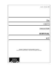 CEOs Disaster Survival Kit.DOC