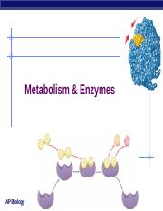 Enzymes, student.ppt