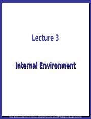 Strategic Management Lecture 03 - Internal Environment