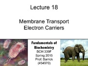 Lecture-18 - Transporters, Electron Carriers (1)