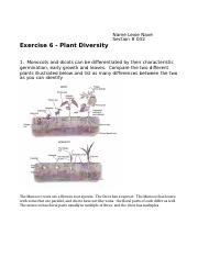 Plant Diversity Worksheet(1)-1