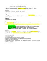 Lab Report Template (1).docx