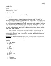 lab write up-ecocolumn project.docx