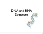 Lecture 2 DNA&RNA structure and Paper Bashing