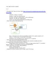 CELL BIO STUDY GUIDES.docx