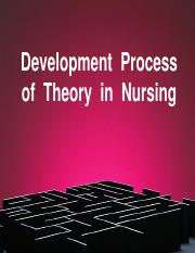 6. Development  Process  of  Theory.pdf