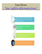EXAM 2 - SLIDES TO STUDY FROM Updated.pdf