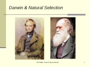 Lecture 16 Darwin and Evolution
