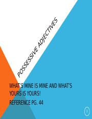 McFadden_Possessive adjectives.ppt