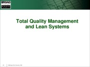 Quality_and_Lean_Systems