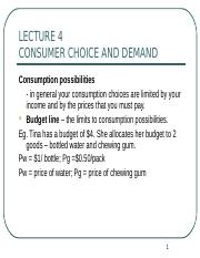 Lecture 4 Consumer Choice & DD