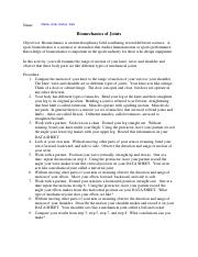 Directional Terms Worksheet.pdf - Name Directional Terms ...