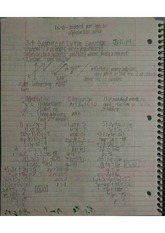 Systems of Linear Equations and Nonlinear Systems Notes