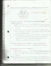 Criminal Justice Crime Triangle Notes