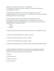 AttendancAssignmentStudyGuide 2 carbohydrates.pdf