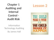 Chap01 Auditing and Internal Control _ Lesson 2 student